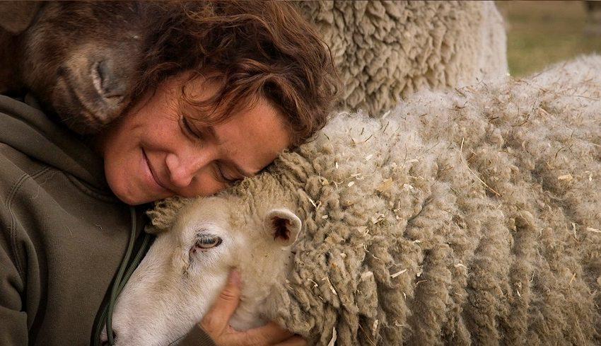 Centro Arte Alameda estrena tres documentales sobre veganismo en el marco del Día Mundial del Medio Ambiente